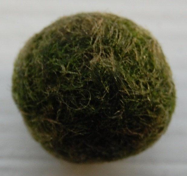 Health Problems Of Marimo Balls Color Indicators Mossball Com